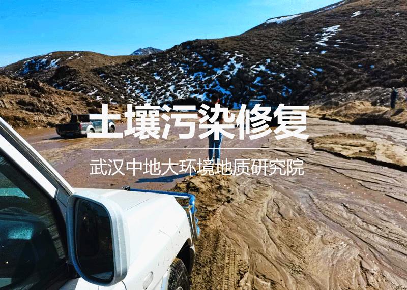 污染土壤修复